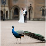 Michelle_and_Jon's_wedding_at_Newstead_Abbey_in_Nottinghamshire_by_Derbyshire_wedding_photographers_HBA_Photography_Page 19