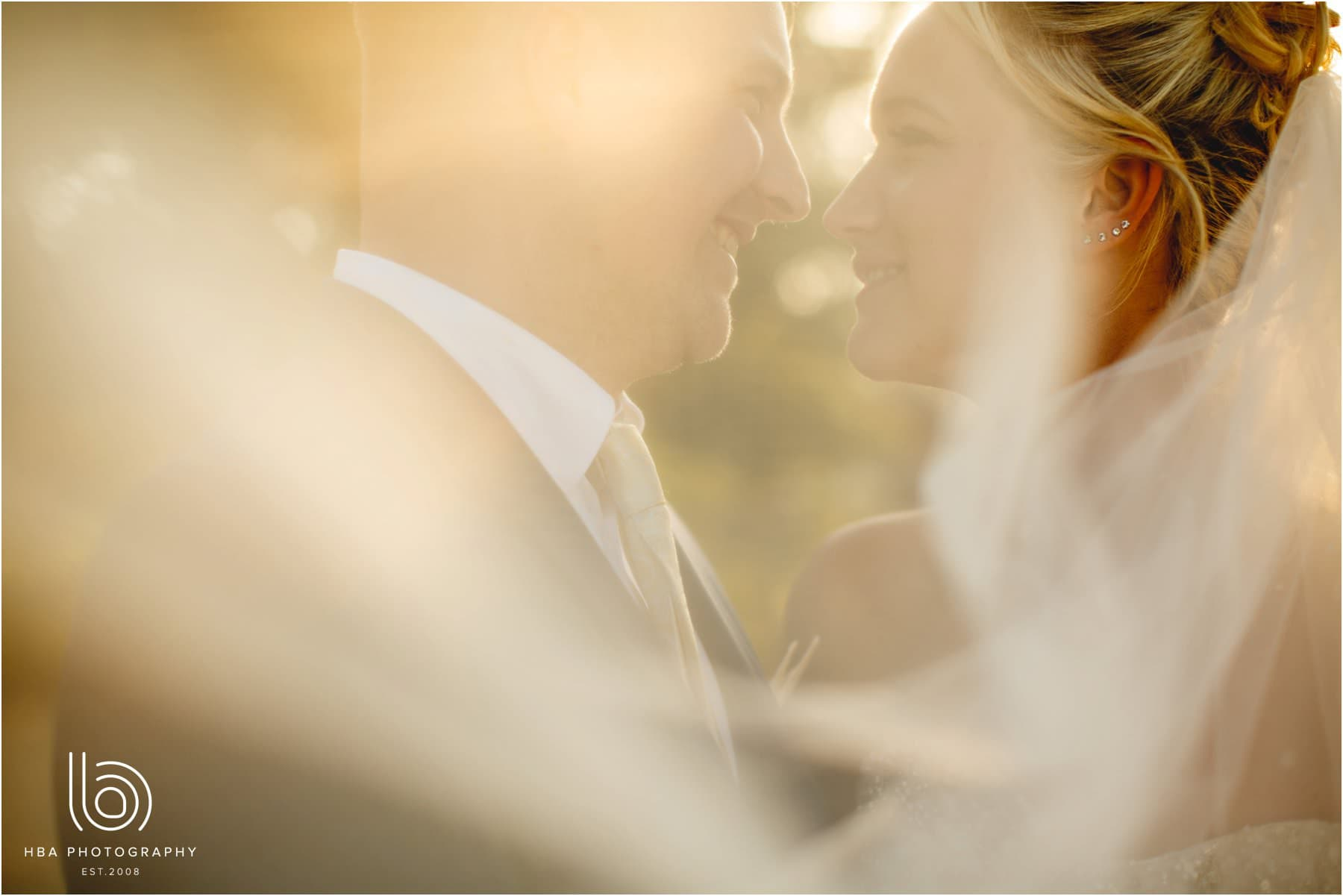 the bride & Groom under the veil