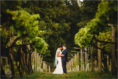 the bride and groom among the vines