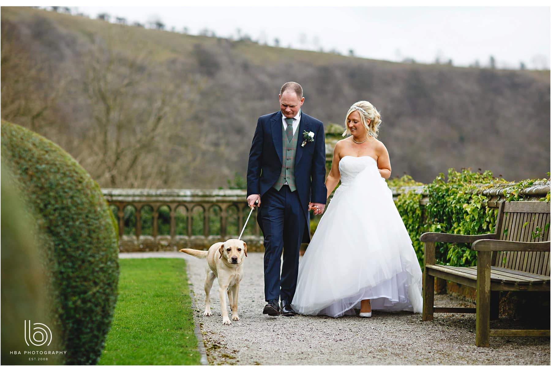 The bride and groom walking the dog at Cressbrook Hall