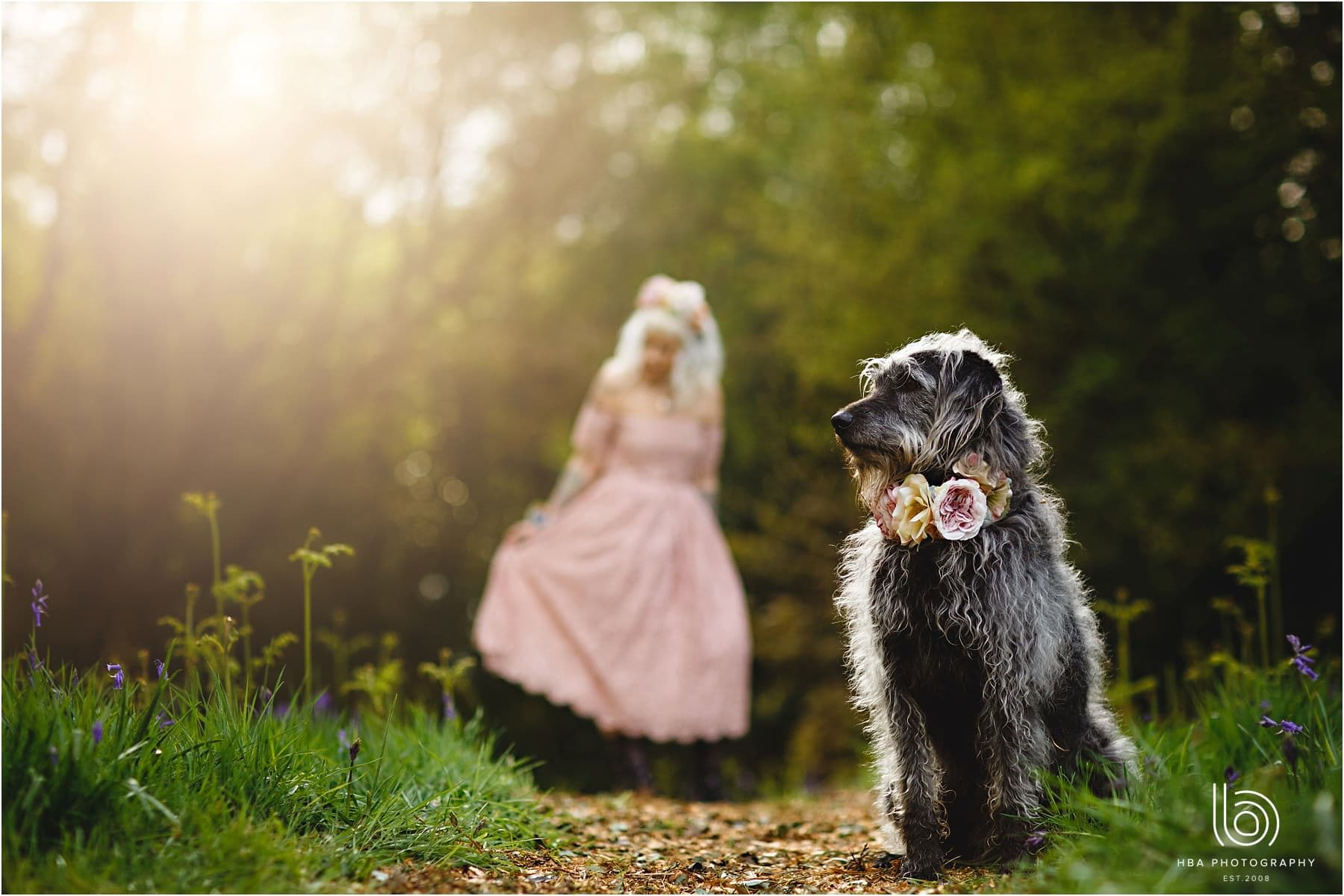 alternative wedding photos in the woods with a dog