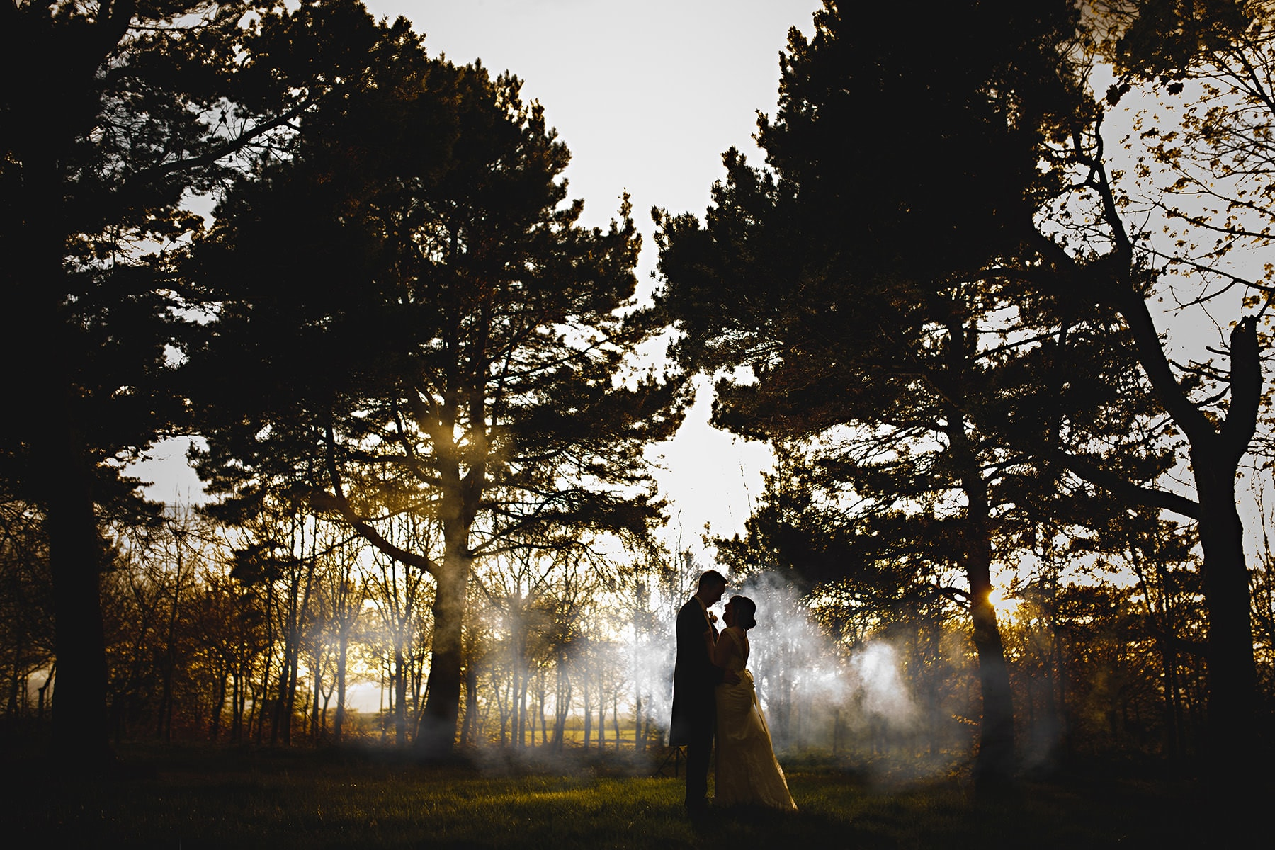 the bride and groom stood in the trees at Alrewas Hayes on their wedding day