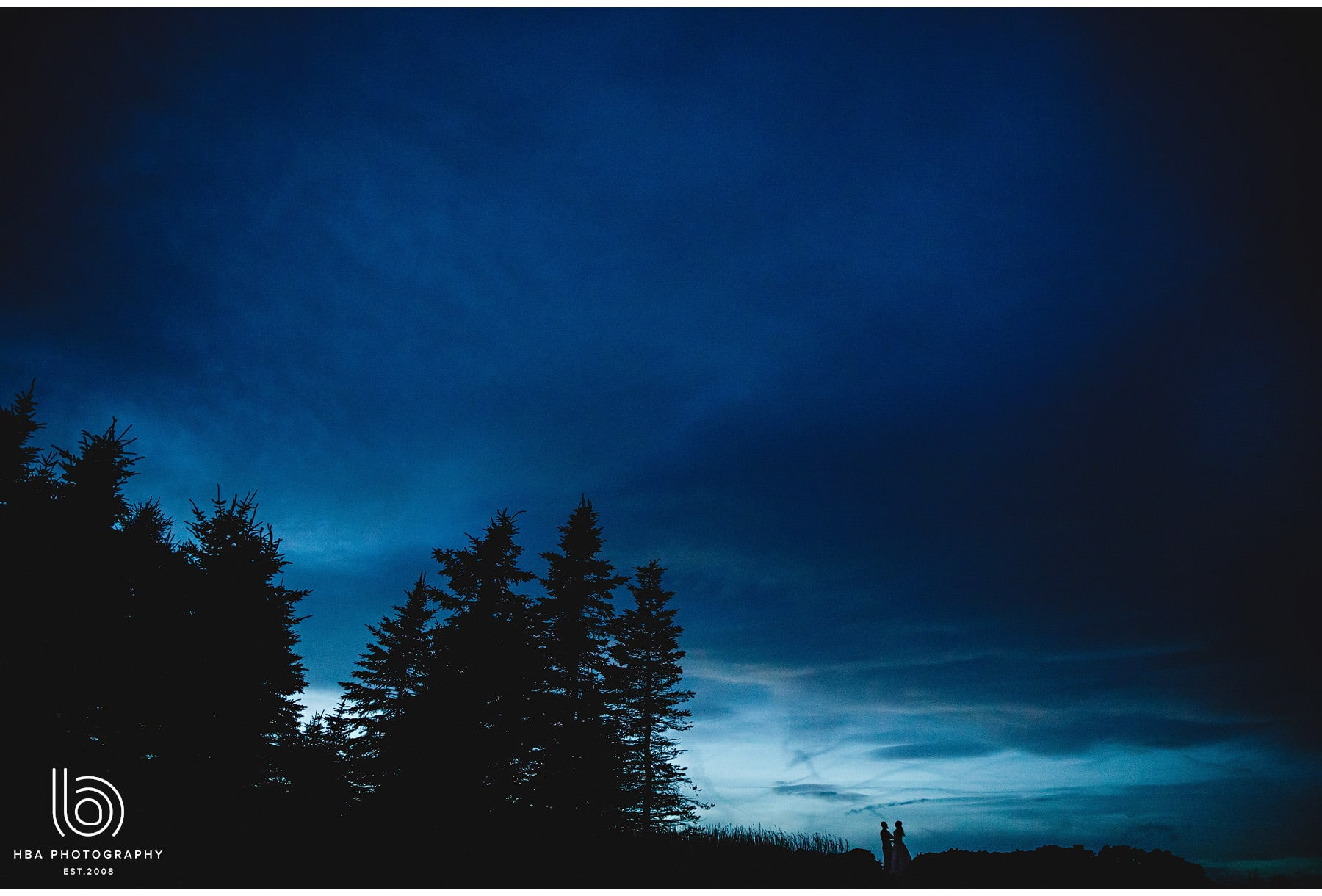 the couple in silhouette against the night sky