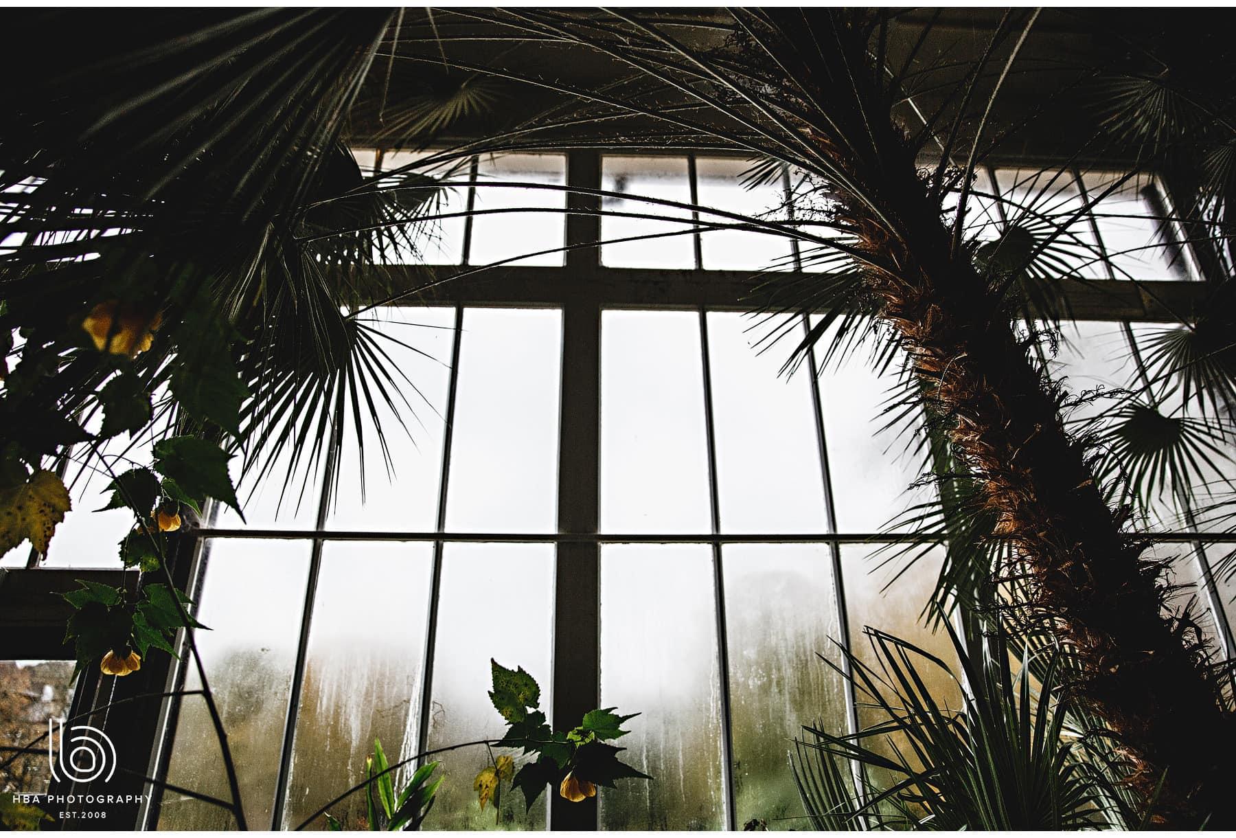 the pavillion gardens