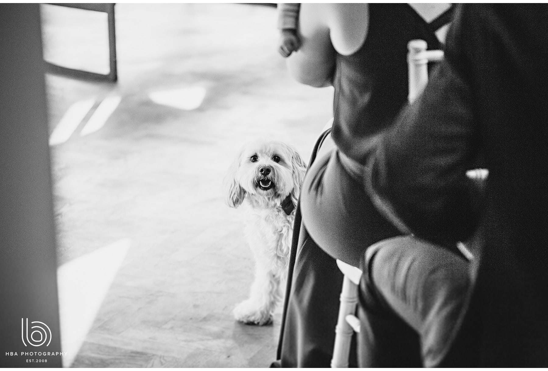 The_Pumping_House_Wedding_Venue_Alternative_Wedding_Photography_