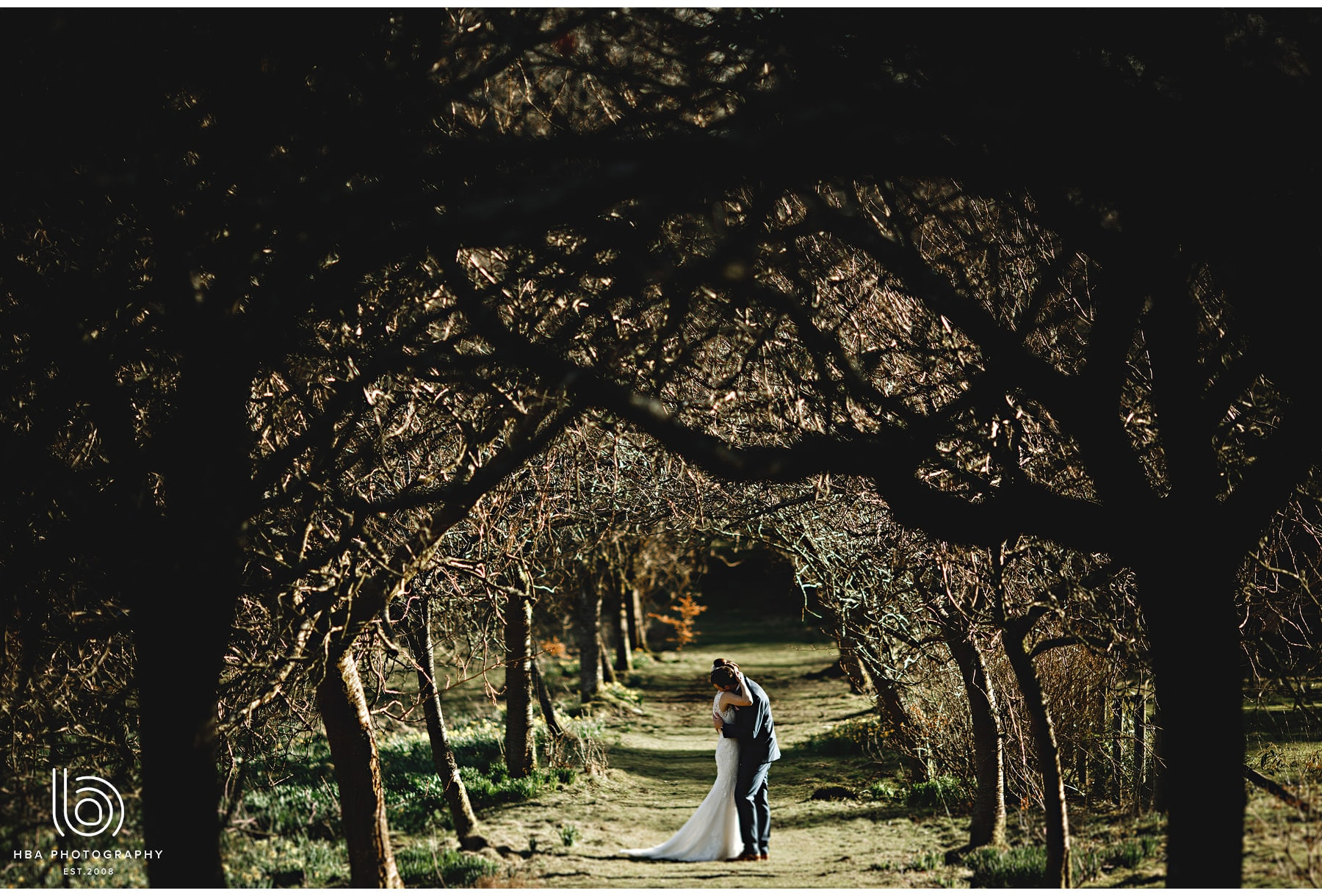 the bride & groom in an avenue of trees