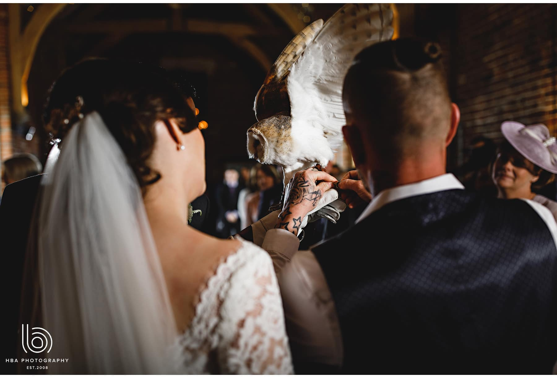 the owl bringing the rings down the aisle