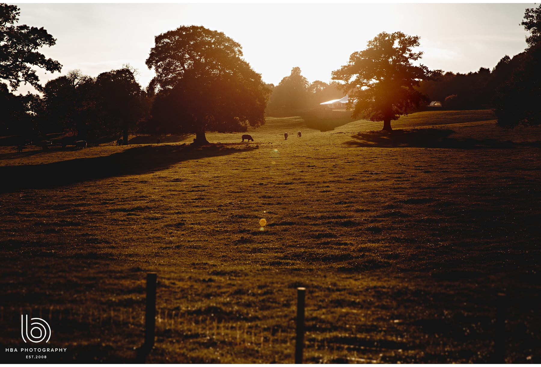 Osmaston_Park_Alternative_Wedding_Photos_Autumn_
